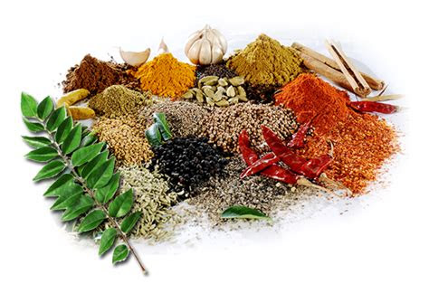 spices picture   icons  png