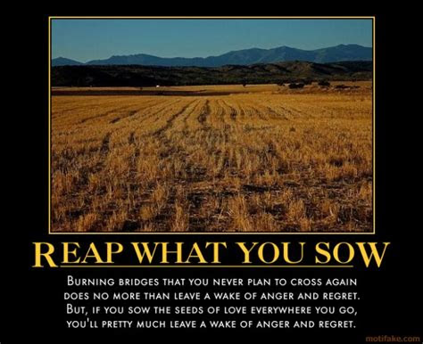 You Shall Reap What You Sow Quotes