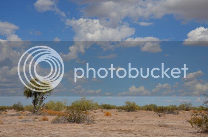 photo Sonoranopencountry_zpsaf30c61f.jpg