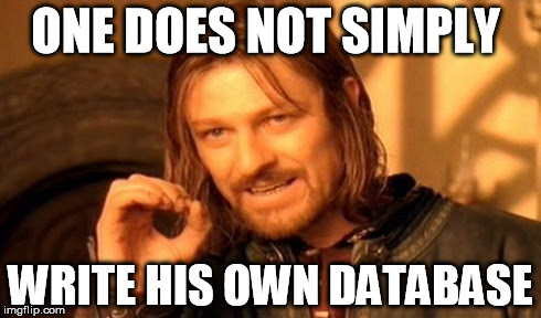 One Does Not Simply Write His Own Database