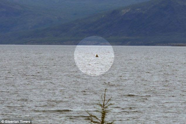 Proof: This photograph, said to be the head of the underwater beast, is being used as evidence to prove the existence of a Siberian Loch Ness monster