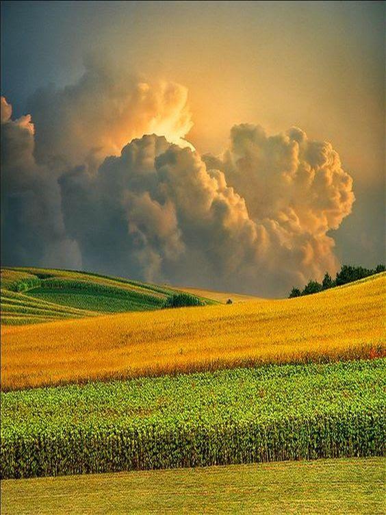 http://www.demotivateur.fr/images-buzz/6063/2%20champanhecomtorresmo.jpg