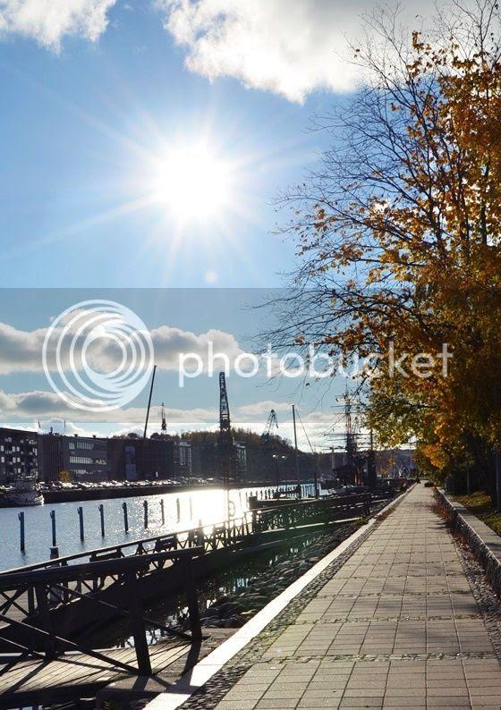 photo DSC_7858_zpsca1c2f98.jpg