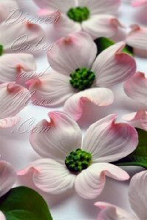 gumpaste flowers   flower tutorials   Pinterest
