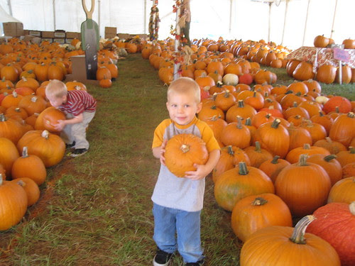 Visiting the Pumpkin Patch