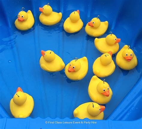 Hook a Duck Game   Bouncy Castles & Soft Play Hire In