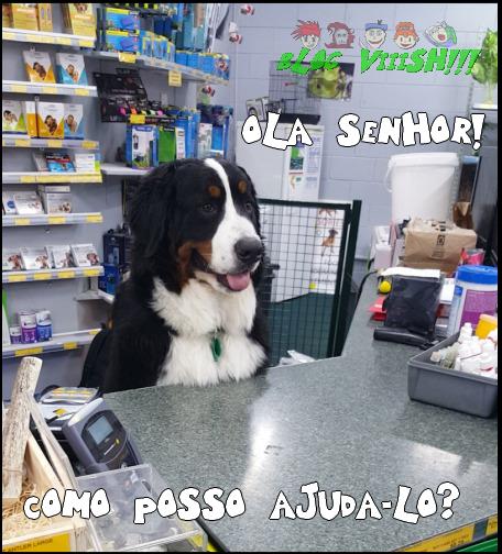 Blog Viiish - Betinho, o funcionário modelo