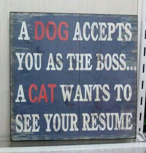 Funny Quotes About Dog Owners. QuotesGram