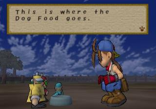 Screenshot Thumbnail / Media File 2 for Harvest Moon - Save the Homeland (USA)