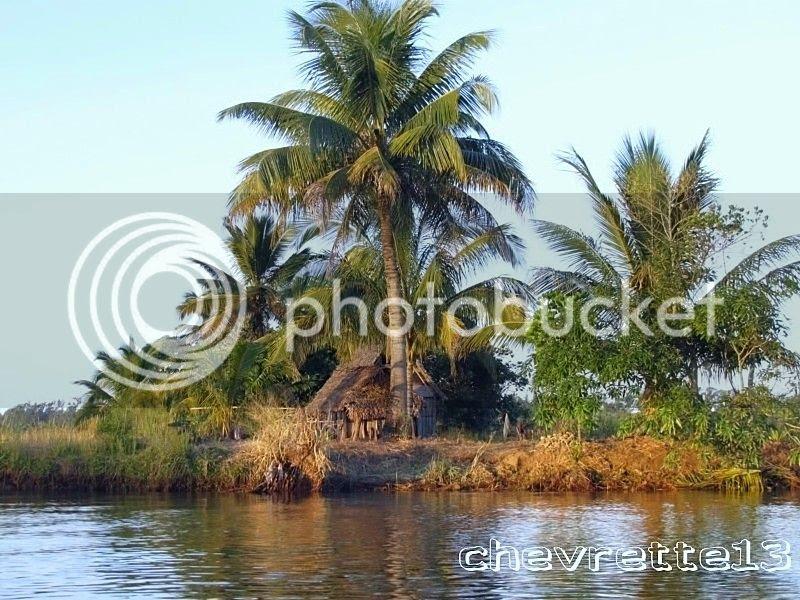 http://i1252.photobucket.com/albums/hh578/chevrette13/Madagascar/IMG_1240800x600_zps99547184.jpg