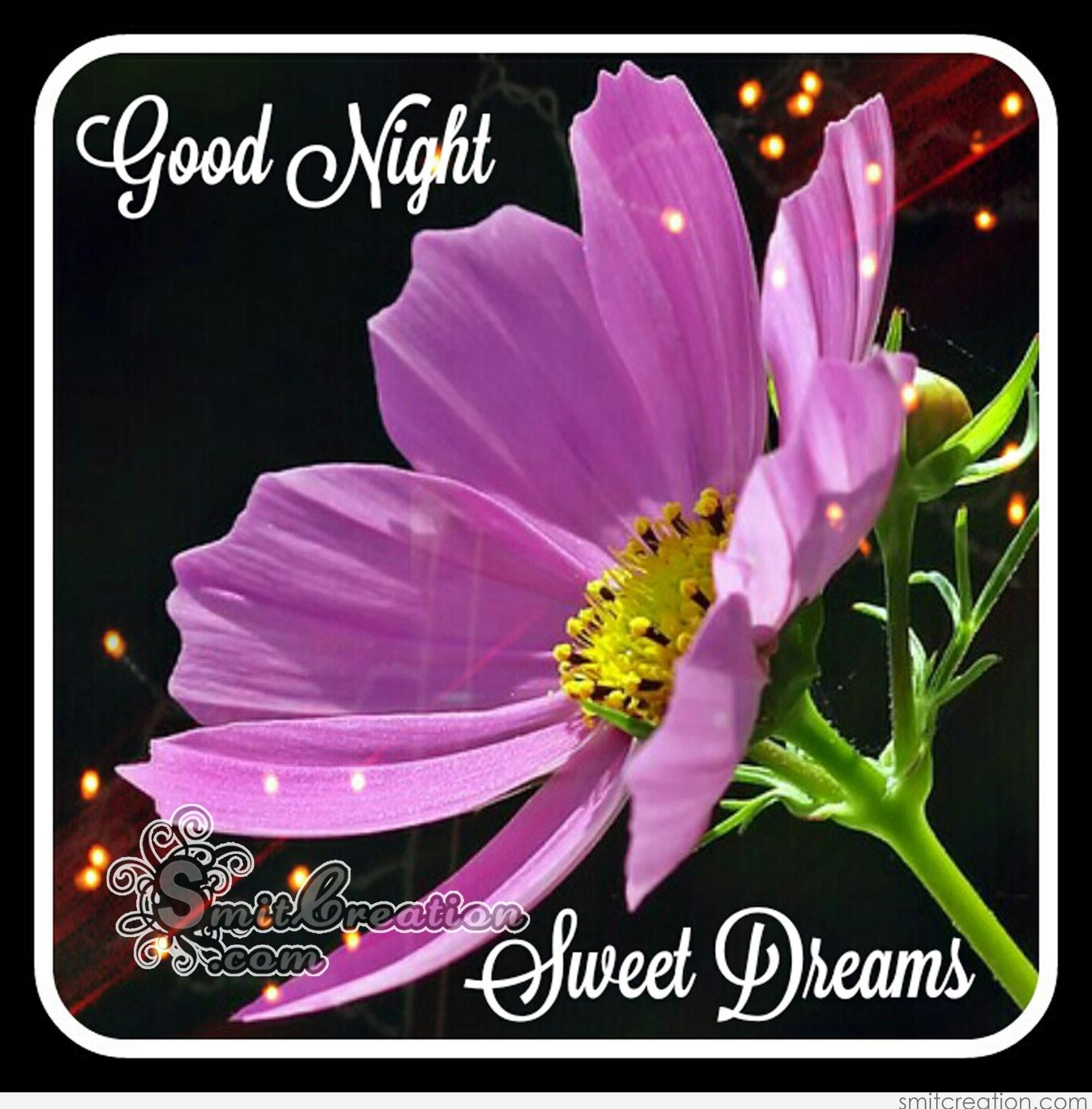 Unique Good Night Images With Flowers Top Colection For Greeting
