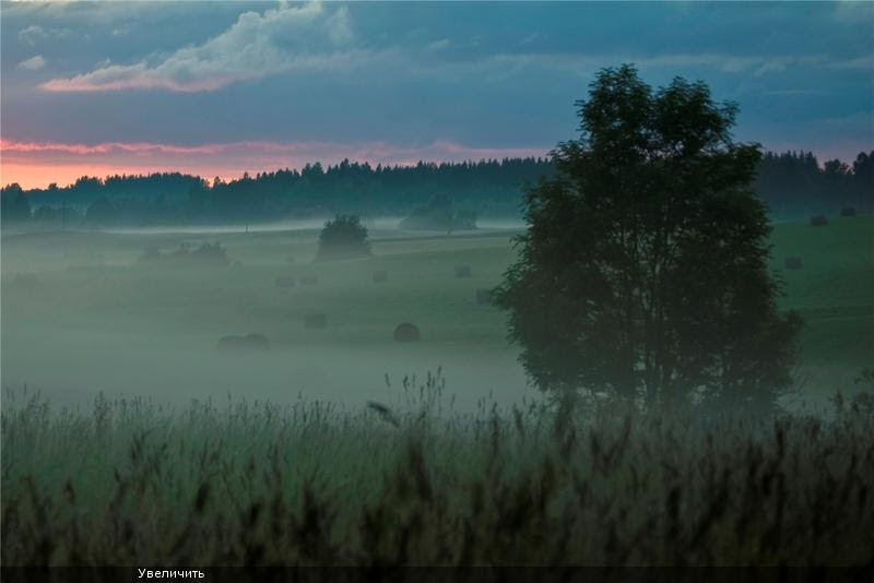 Nature in Latvia 32