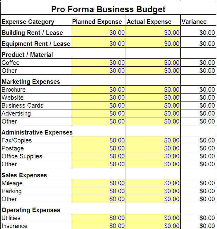 pro forma budget