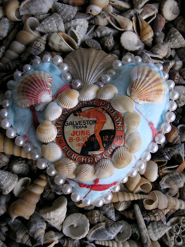 Sea Pageant Seashell! 2