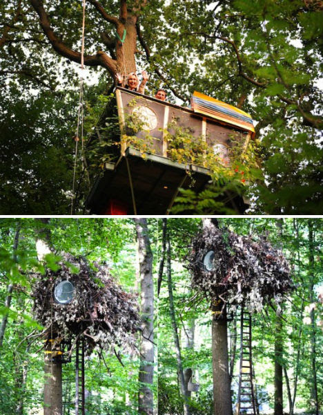 Treehouses Airhotel 1