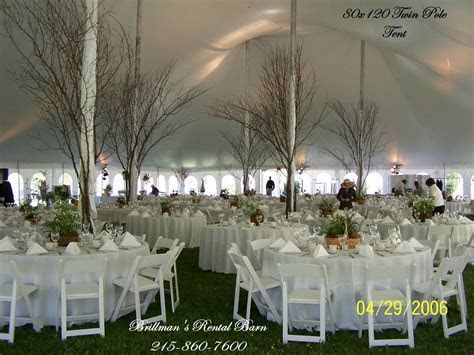 Tree branches around the tent poles.   Tented & Outdoor
