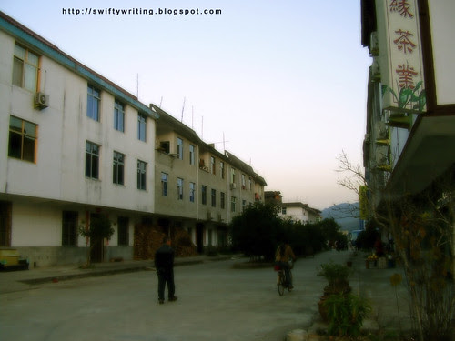 The Town Of Tea Makers in Wuyishan