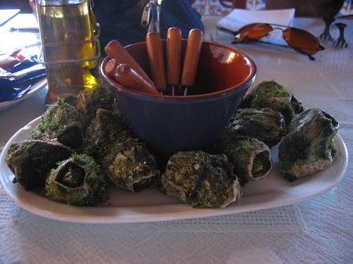 Cracas bico (barnacles)