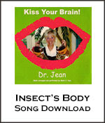 Insect's Body Song Download with Lyrics