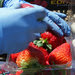 Workers at Sundance Berry Farms in Watsonville, Calif., are learning ways to enhance food safety, like not wearing jewelry that might fall into boxes of berries.