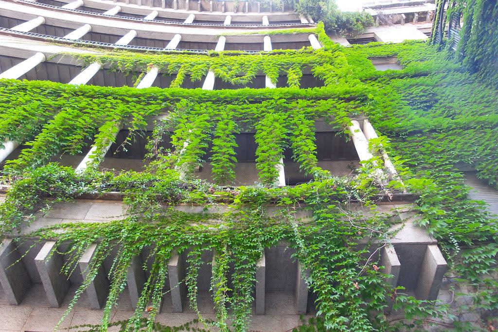 Sotto l'effetto #cascata del #green