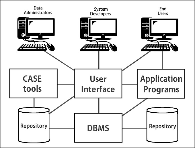Components Of Database Environment