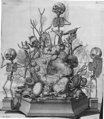 Ruysch fetal skeleton displays - 1601