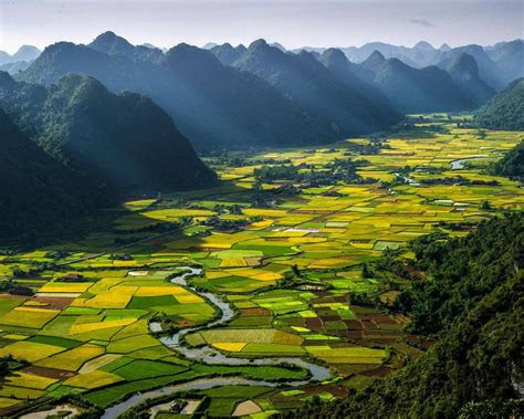pauline landscape rice vietnam desktop wallpaper hd