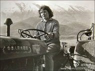 A signpost of earlier days: An Albanian drives a tractor marked