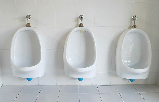 After you, madam: In the future, Berliners of both sexes could find themselves weeing at neighbouring urinals
