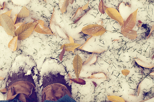 where did fall go?