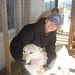 Chompers the wolfdog and I