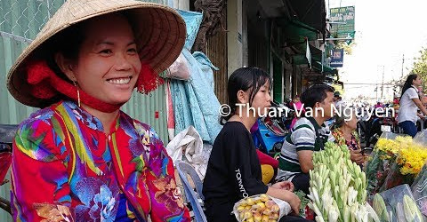 Vietnam || Binh Minh Rural Market || Vinh Long Province