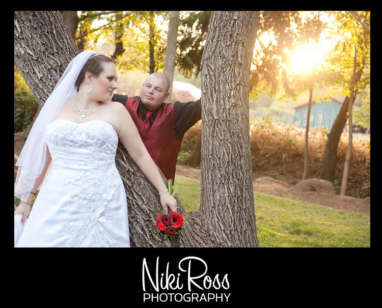 bride-groom-tree