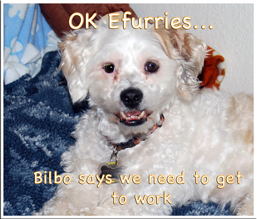 Bilbo-says