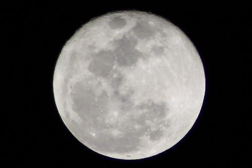 moon hk