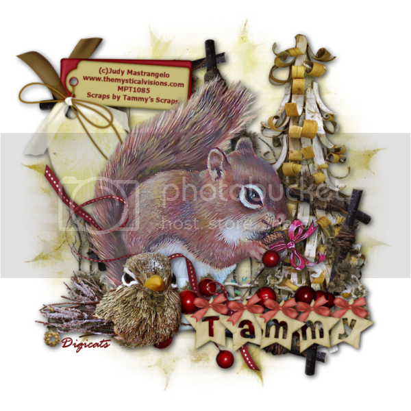 A Squirrel's Christmas - Tammy