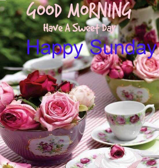 Good Morning Have A Sweet Sunday Pictures Photos And Images For