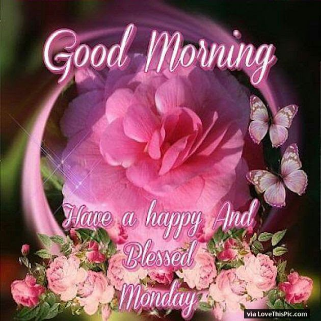 Good Morning Have A Happy And Blessed Monday Pictures Photos And