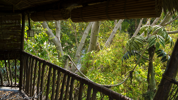 Disneyland Resort, Disneyland, Tarzan Treehouse, Thatch, Hut