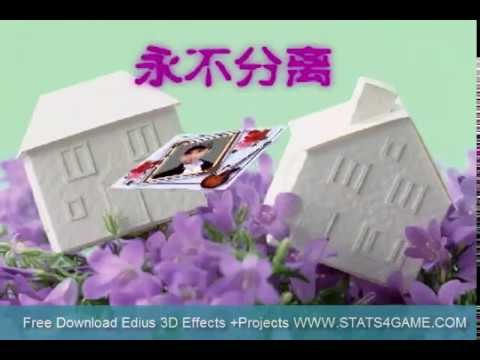 Download 3D Chines Effects 8 For Edius ,Adobe Premiere, Ulead
