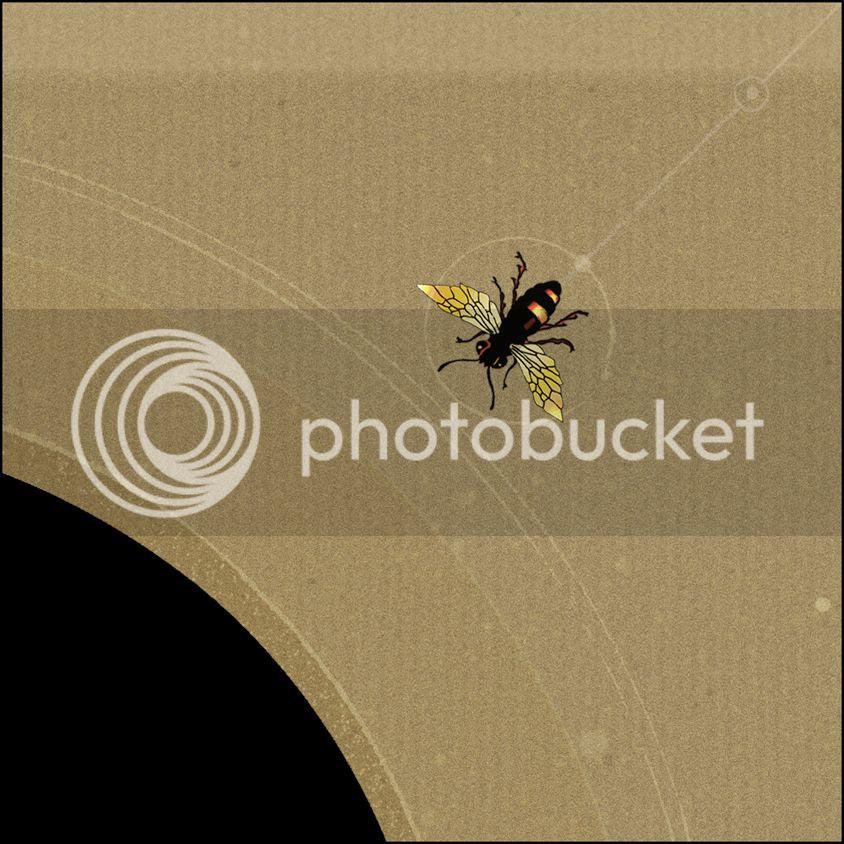 photo Inside-detail2_zpsd3a6927e.jpg