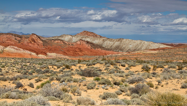 lines of color, Valley of Fire State Park, Nevada