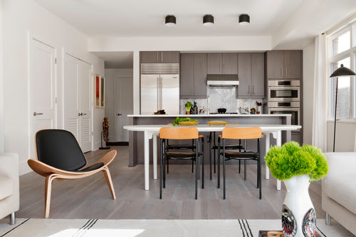 Houzz Tour: Art and Natural Light Shine in a Contemporary Apartment