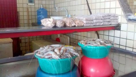 Peixe - Semana Santa - Camarão