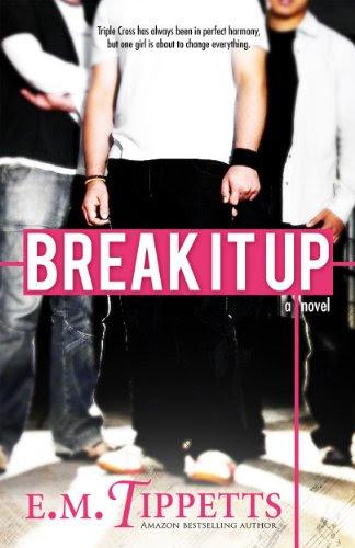 Break It Up by E.M. Tippetts