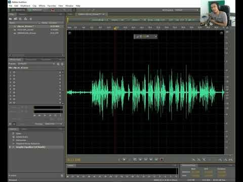 Tutorial Adobe Audition Noise Reduction, De Hummer, EQ Audio Podcast