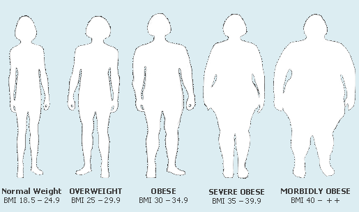 body fat percentage chart morbidly obese