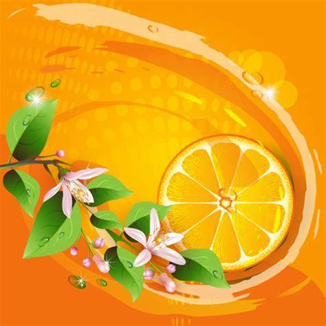 Lemon vector free free vector download (428 Free vector