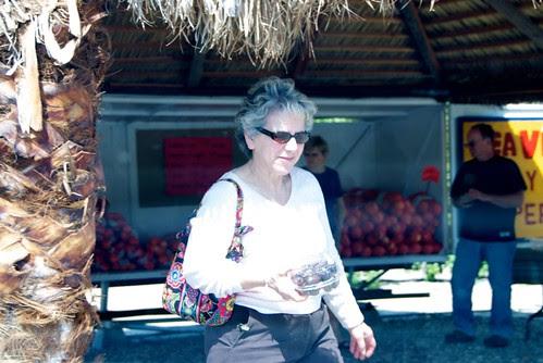 buying Medjool dates in Anza-Borrego Desert State Park